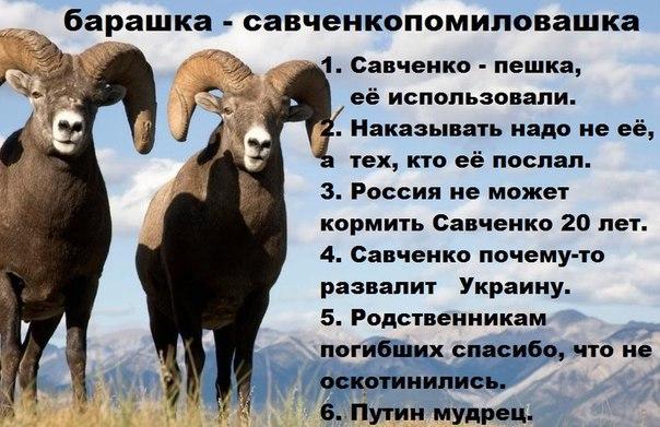 NADIA SAVCHENKO - Page 3 Savchenko_Memes_Russia-2