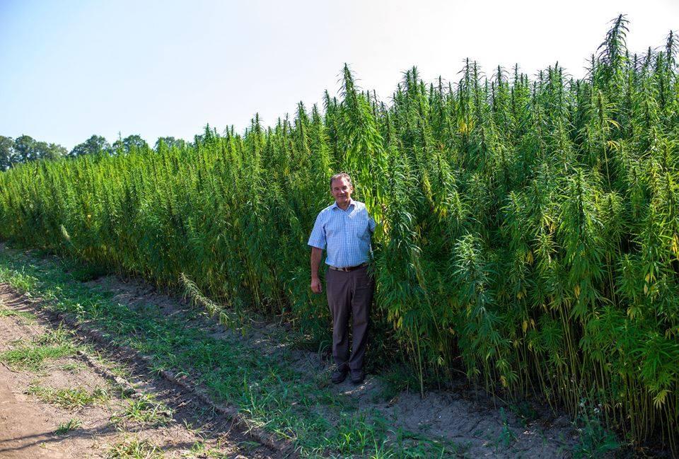 Michel Terestchenko near the hemp plantation in Hlukhiv. Photo: courtesy