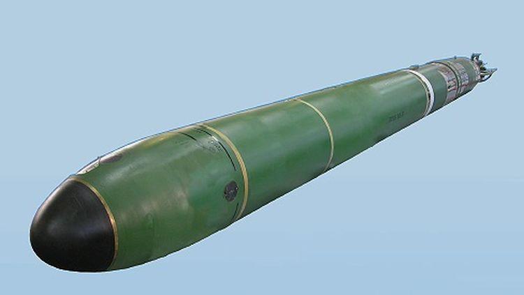 Auch russische Torpedos fliegen nur mit ukrainischen Bauelementen
