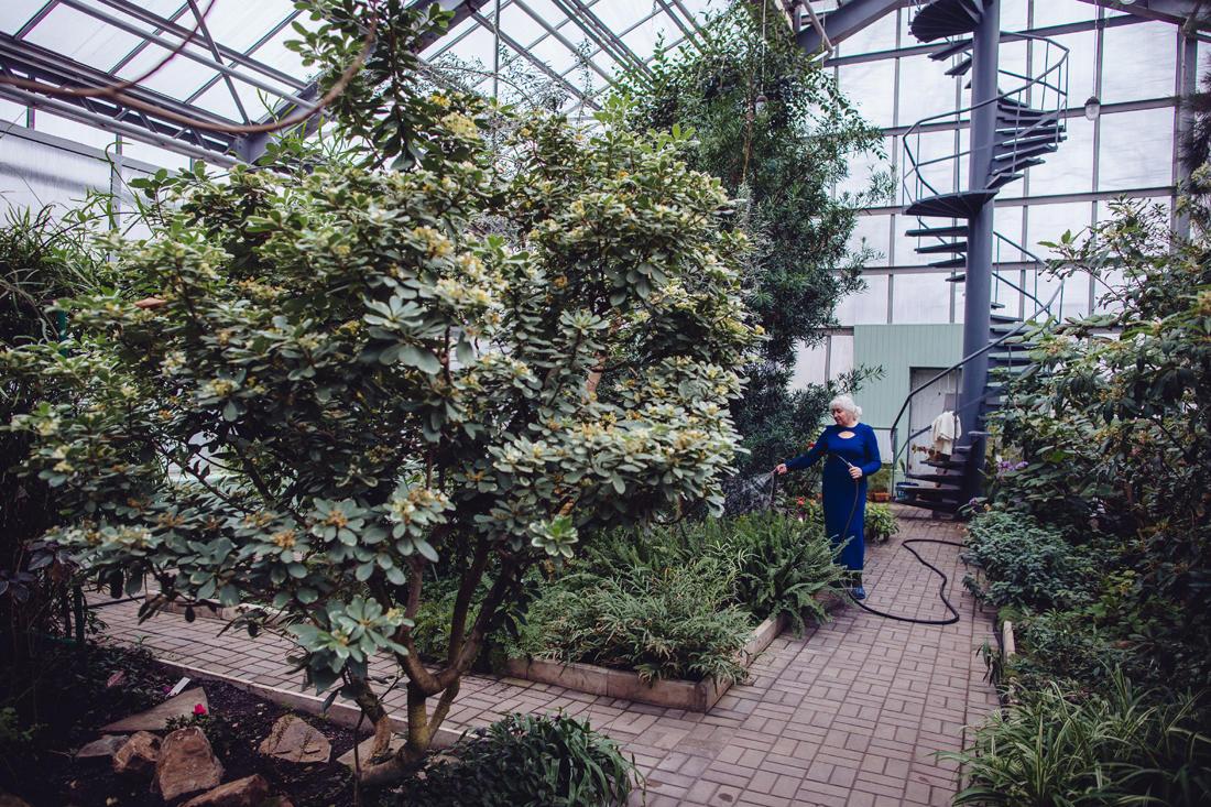 Eine Frau gießt Pflanzen im Botanischen Garten von Donezk. Die Öffnungszeiten der Anlage wurden von 8.00 bis 14.00 Uhr reduziert, und viele der Angestellten haben schon lange kein Gehalt mehr bekommen, aber sie arbeiten weiter, unterstützt von der Stiftung für seltene Pflanzen. - Foto: Max Avdeev / Port
